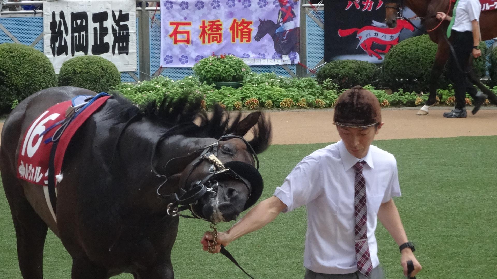 【撃沈回顧】東西トライアルともにクラシック組が夏の上がり馬を撃破!