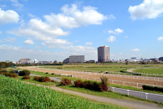 川崎記念2020